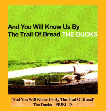 the_ducks.jpg
